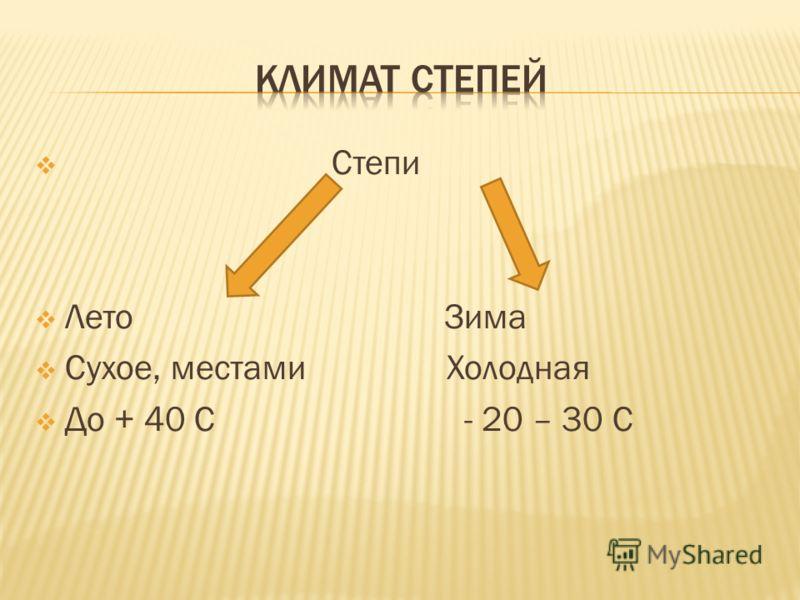 Степи Лето Зима Сухое, местами Холодная До + 40 С - 20 – 30 С
