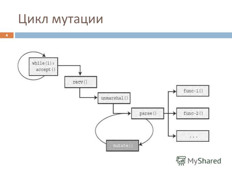 Цикл мутации 4