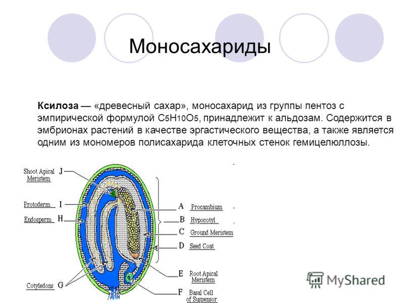 Ксилоза «древесный сахар», моносахарид из группы пентоз с эмпирической формулой C 5 H 10 O 5, принадлежит к альдозам. Содержится в эмбрионах растений в качестве эргастического вещества, а также является одним из мономеров полисахарида клеточных стено