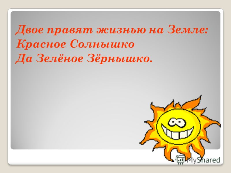Двое правят жизнью на Земле: Красное Солнышко Да Зелёное Зёрнышко.