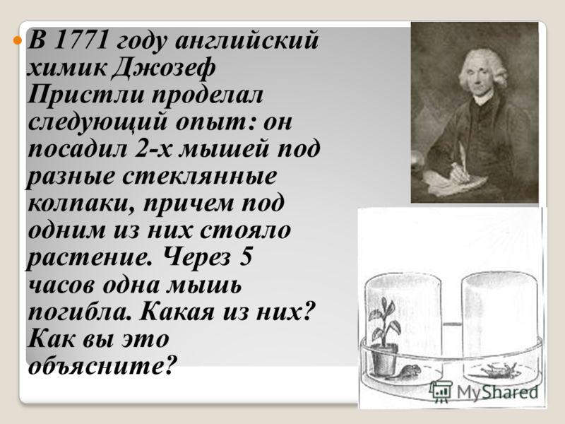 В 1771 году английский химик Джозеф Пристли проделал следующий опыт: он посадил 2-х мышей под разные стеклянные колпаки, причем под одним из них стояло растение. Через 5 часов одна мышь погибла. Какая из них? Как вы это объясните?