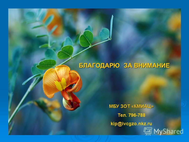 БЛАГОДАРЮ ЗА ВНИМАНИЕ МБУ ЗОТ «КМИАЦ» Тел. 796-788 kip@ivcgzo.nkz.ru