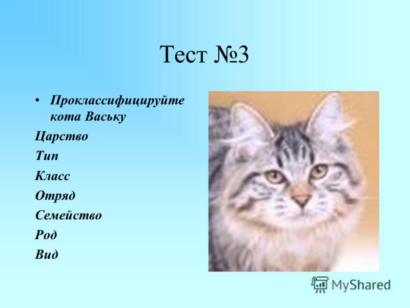 Установите соответствие. Тест 2 таксоныпредставители А.Класс Б.Семейство В.Надцарство Г.Отряд Д.Тип Е.Вид Ж.Род З.Царство 1.Хордовые 2.Млекопитающие 3.Хищные 4.Кошачьи 5.Тигр 6.Тигр уссурийский 7.Эукариоты 8.Животные