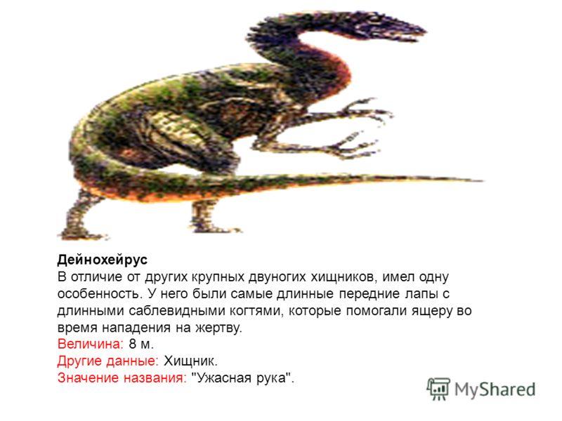 Дейнохейрус В отличие от других крупных двуногих хищников, имел одну особенность. У него были самые длинные передние лапы с длинными саблевидными когтями, которые помогали ящеру во время нападения на жертву. Величина: 8 м. Другие данные: Хищник. Знач