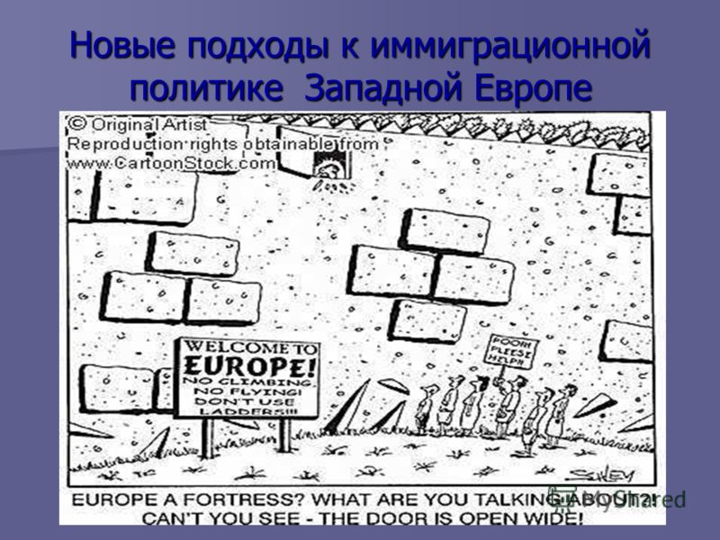 Новые подходы к иммиграционной политике Западной Европе