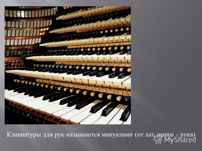 Клавиатуры для рук называются мануалами ( от лат. manus - рука )