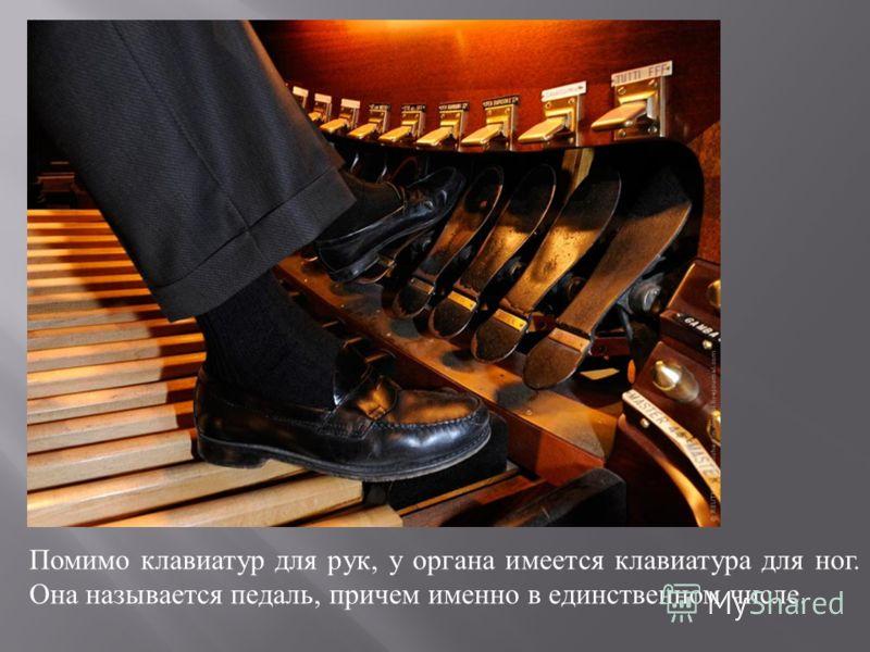 Помимо клавиатур для рук, у органа имеется клавиатура для ног. Она называется педаль, причем именно в единственном числе.