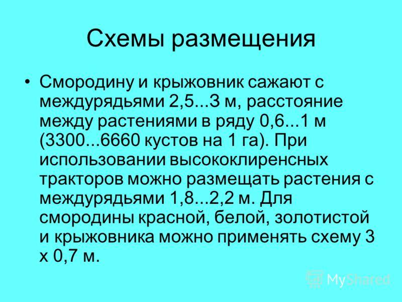 Схемы размещения Смородину и крыжовник сажают с междурядьями 2,5...З м, расстояние между растениями в ряду 0,6...1 м (3300...6660 кустов на 1 га). При использовании высококлиренсных тракторов можно размещать растения с междурядьями 1,8...2,2 м. Для с