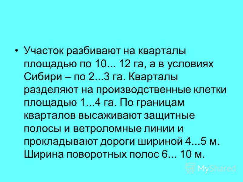 Участок разбивают на кварталы площадью по 10... 12 га, а в условиях Сибири – по 2...3 га. Кварталы разделяют на производственные клетки площадью 1...4 га. По границам кварталов высаживают защитные полосы и ветроломные линии и прокладывают дороги шири