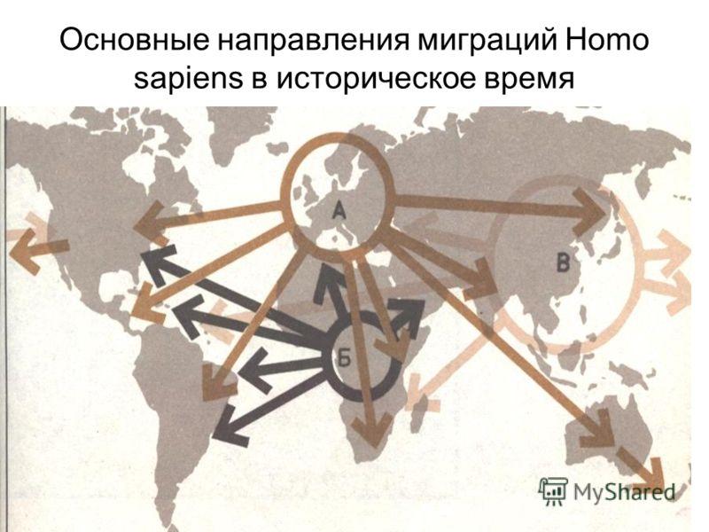 Основные направления миграций Homo sapiens в историческое время