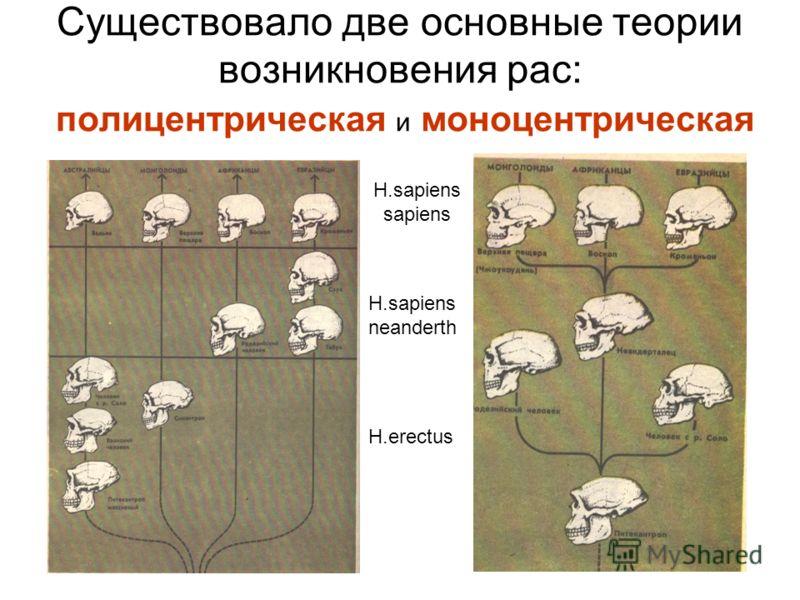 Существовало две основные теории возникновения рас: полицентрическая и моноцентрическая H.erectus H.sapiens neanderth H.sapiens sapiens