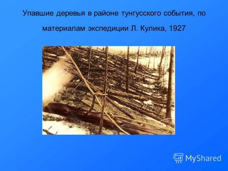 Упавшие деревья в районе тунгусского события, по материалам экспедиции Л. Кулика, 1927