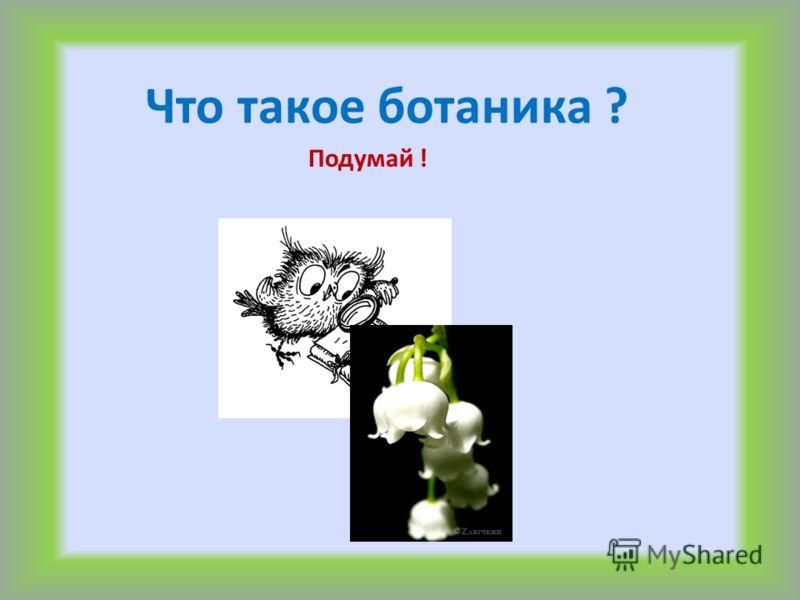 Что такое ботаника ? Подумай !