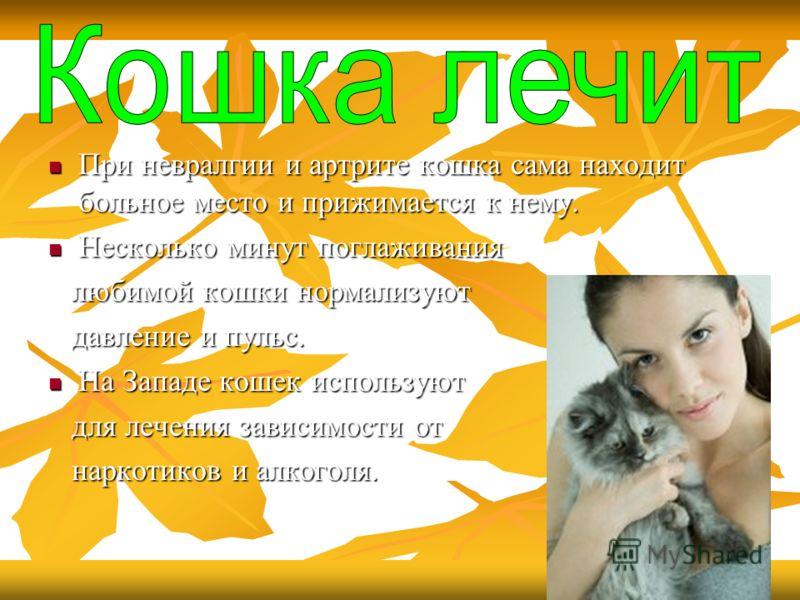 При невралгии и артрите кошка сама находит больное место и прижимается к нему. При невралгии и артрите кошка сама находит больное место и прижимается к нему. Несколько минут поглаживания Несколько минут поглаживания любимой кошки нормализуют любимой