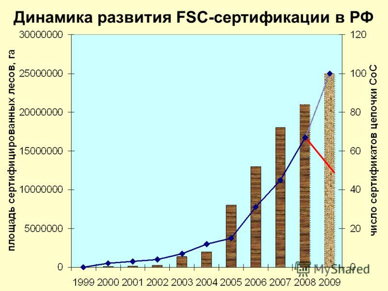 Динамика развития FSC-сертификации в РФ