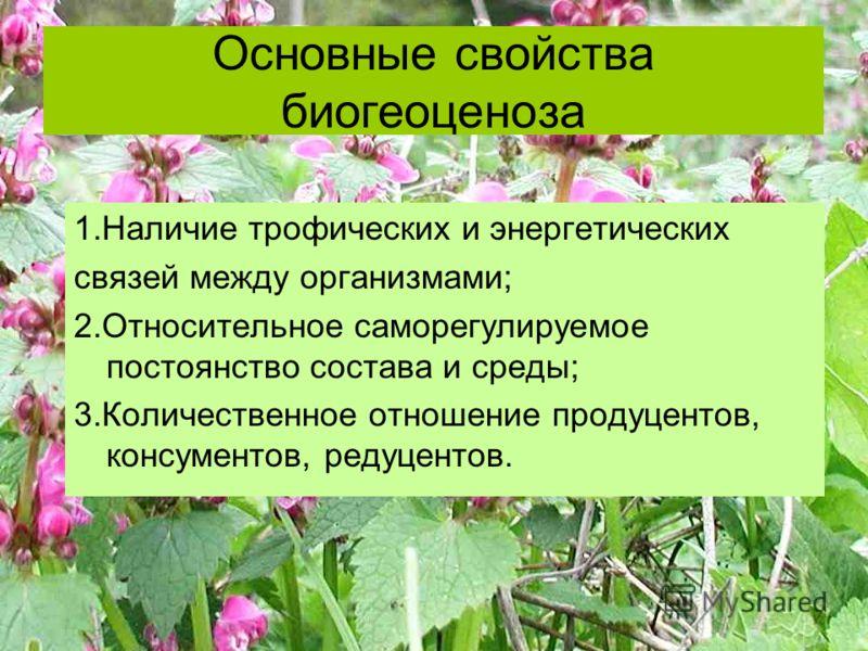 Основные свойства биогеоценоза 1.Наличие трофических и энергетических связей между организмами; 2.Относительное саморегулируемое постоянство состава и среды; 3.Количественное отношение продуцентов, консументов, редуцентов.