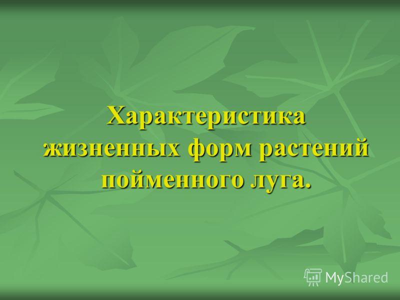 Характеристика жизненных форм растений пойменного луга.