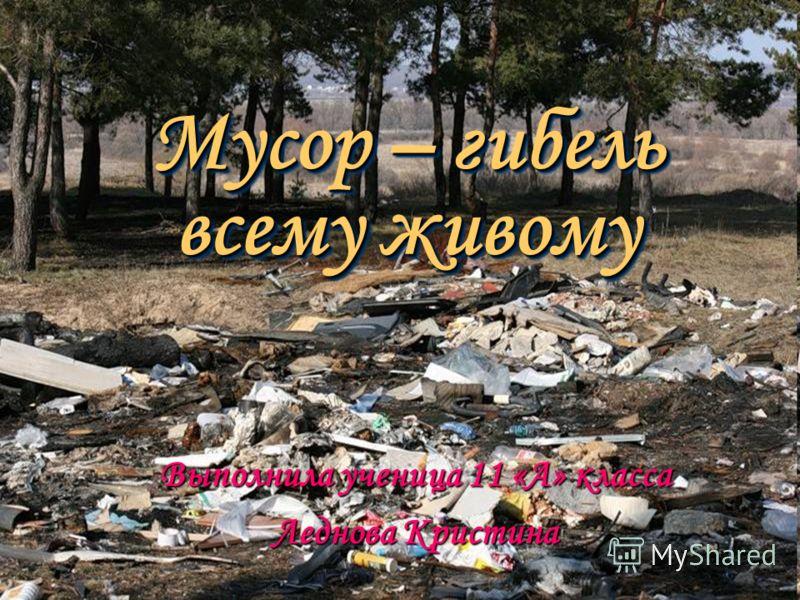 Мусор – гибель всему живому Выполнила ученица 11 «А» класса Леднова Кристина