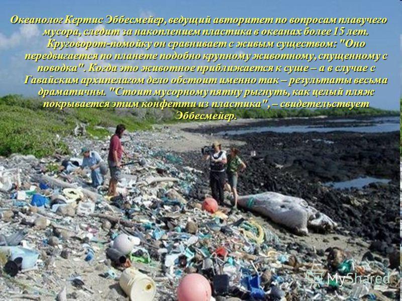 Океанолог Кертис Эббесмейер, ведущий авторитет по вопросам плавучего мусора, следит за накоплением пластика в океанах более 15 лет. Круговорот-помойку он сравнивает с живым существом: