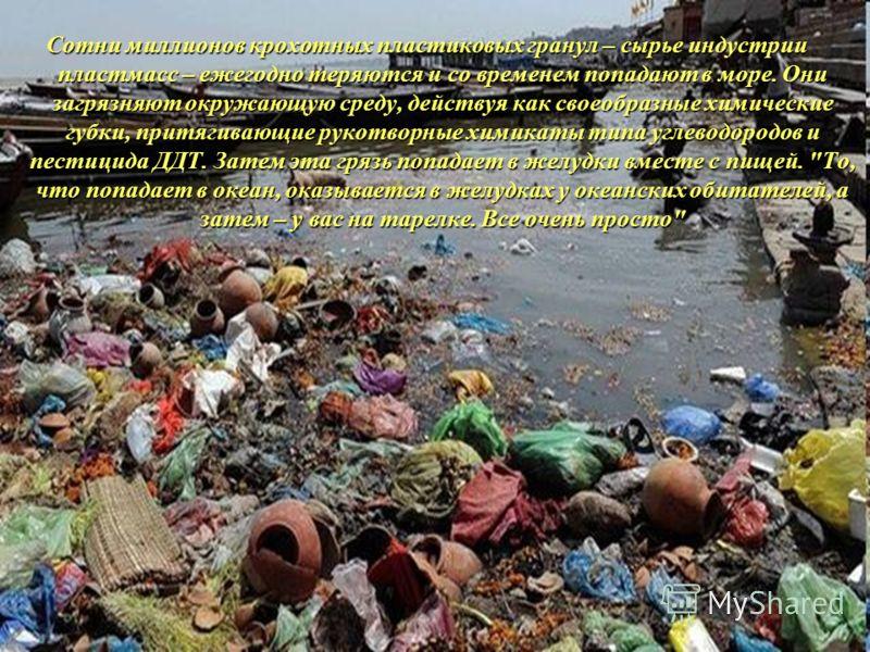 Сотни миллионов крохотных пластиковых гранул – сырье индустрии пластмасс – ежегодно теряются и со временем попадают в море. Они загрязняют окружающую среду, действуя как своеобразные химические губки, притягивающие рукотворные химикаты типа углеводор