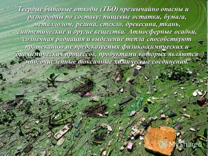 Твердые бытовые отходы (ТБО) чрезвычайно опасны и разнородны по составу: пищевые остатки, бумага, металлолом, резина, стекло, древесина, ткань, синтетические и другие вещества. Атмосферные осадки, солнечная радиация и выделение тепла способствуют про
