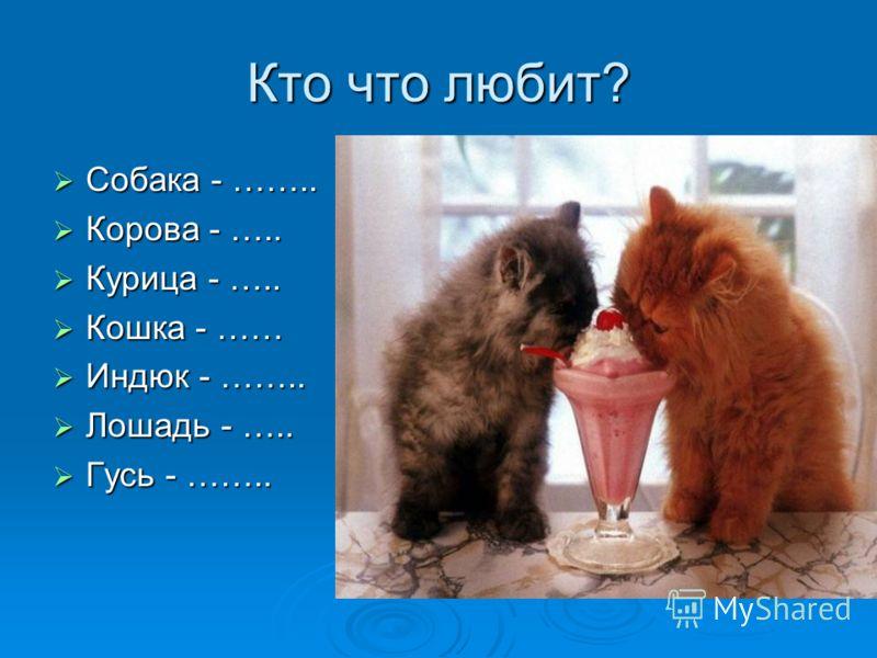 Кто что любит? Собака - …….. Собака - …….. Корова - ….. Корова - ….. Курица - ….. Курица - ….. Кошка - …… Кошка - …… Индюк - …….. Индюк - …….. Лошадь - ….. Лошадь - ….. Гусь - …….. Гусь - ……..