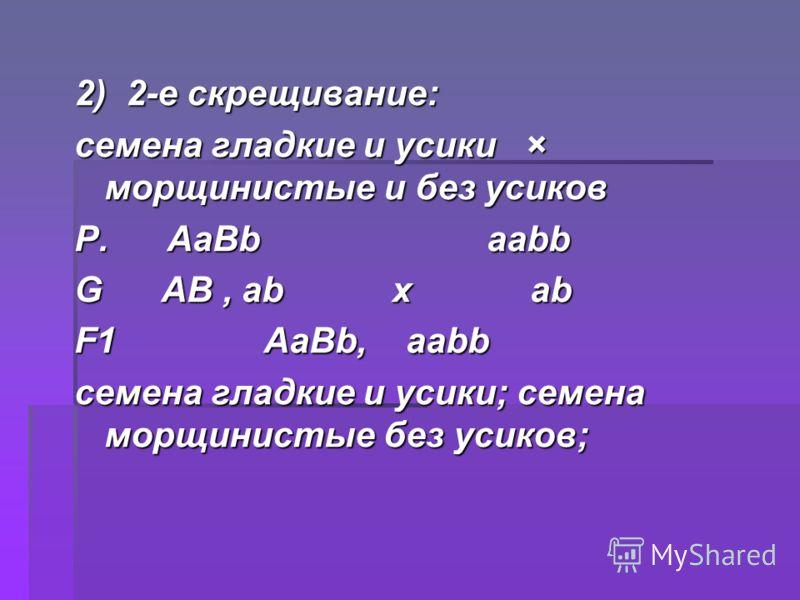 2) 2-е скрещивание: семена гладкие и усики × морщинистые и без усиков Р. АаBb ааbb G АB, аb х аb F1 АаBb, ааbb семена гладкие и усики; семена морщинистые без усиков;