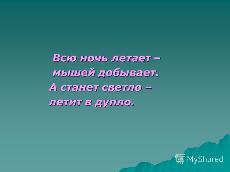Всю ночь летает – Всю ночь летает – мышей добывает. мышей добывает. А станет светло – А станет светло – летит в дупло. летит в дупло.