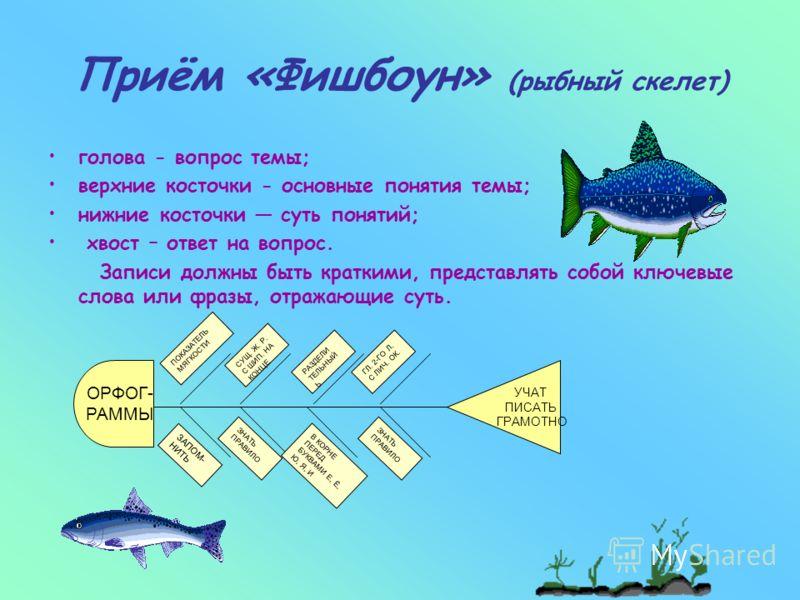 Схема фишбоун или рыбий скелет