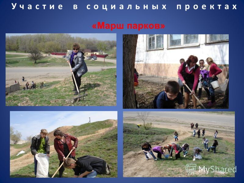 Участие в социальных проектах «Марш парков»