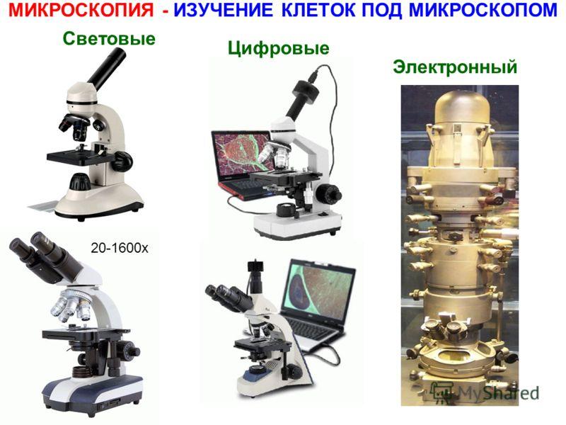 МИКРОСКОПИЯ - ИЗУЧЕНИЕ КЛЕТОК ПОД МИКРОСКОПОМ Световые 20-1600x Цифровые Электронный