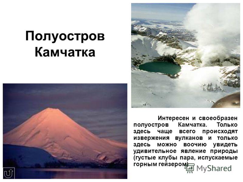 Полуостров Камчатка Интересен и своеобразен полуостров Камчатка. Только здесь чаще всего происходят извержения вулканов и только здесь можно воочию увидеть удивительное явление природы (густые клубы пара, испускаемые горным гейзером)