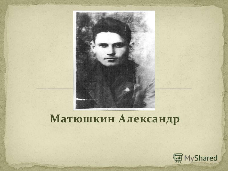 Матюшкин Александр