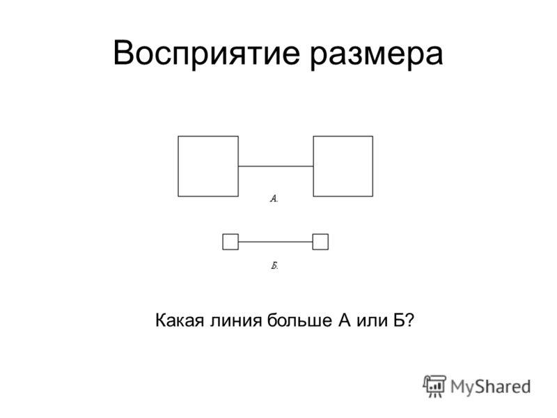 Восприятие размера Какая линия больше А или Б?