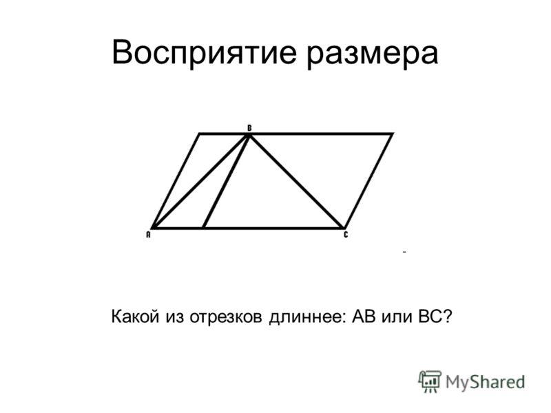 Восприятие размера Какой из отрезков длиннее: АВ или ВС?