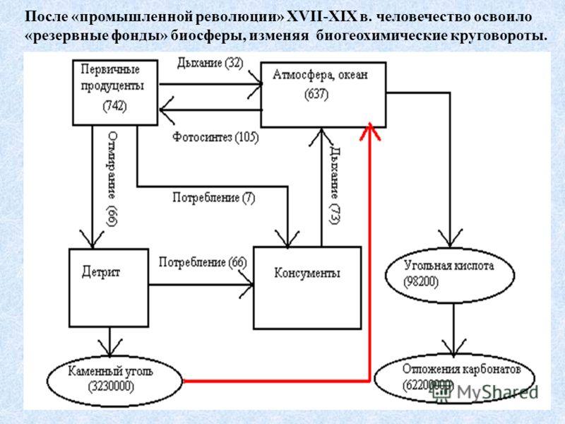 После «промышленной революции» XVII-XIX в. человечество освоило «резервные фонды» биосферы, изменяя биогеохимические круговороты.