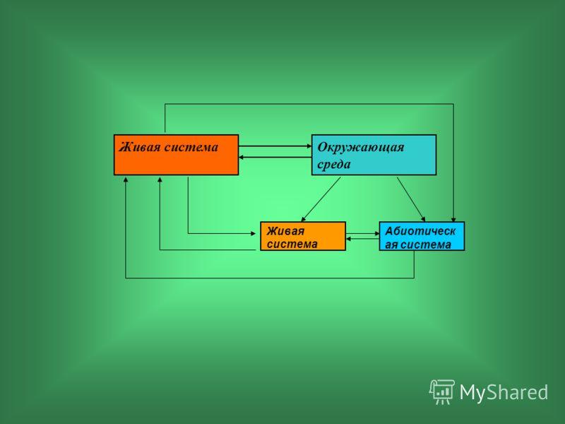 Окружающая среда Живая система Абиотическ ая система