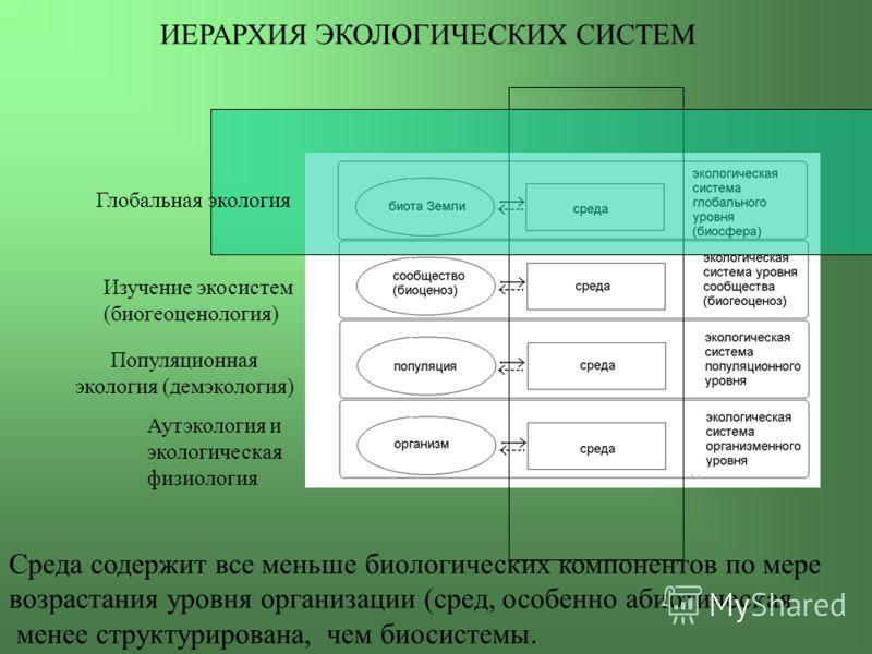 Аутэкология и экологическая физиология Популяционная экология (демэкология) Изучение экосистем (биогеоценология) Глобальная экология ИЕРАРХИЯ ЭКОЛОГИЧЕСКИХ СИСТЕМ Среда содержит все меньше биологических компонентов по мере возрастания уровня организа