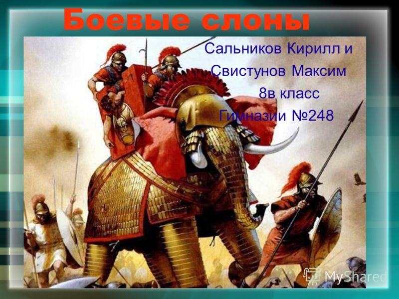 Боевые слоны Сальников Кирилл и Свистунов Максим 8в класс Гимназии 248