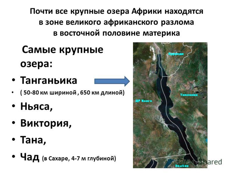 Почти все крупные озера Африки находятся в зоне великого африканского разлома в восточной половине материка Самые крупные озера: Танганьика ( 50-80 км шириной, 650 км длиной) Ньяса, Виктория, Тана, Чад (в Сахаре, 4-7 м глубиной)