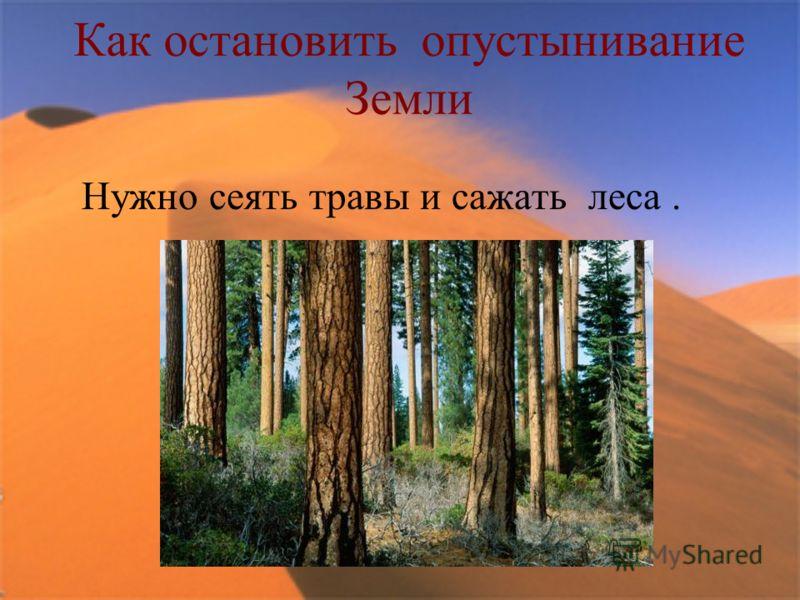 Как остановить опустынивание Земли Нужно сеять травы и сажать леса.