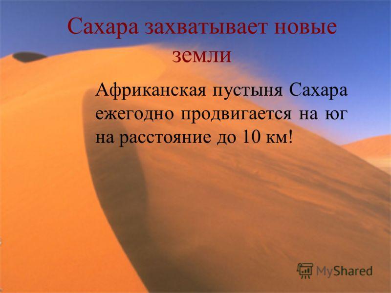 Сахара захватывает новые земли Африканская пустыня Сахара ежегодно продвигается на юг на расстояние до 10 км!