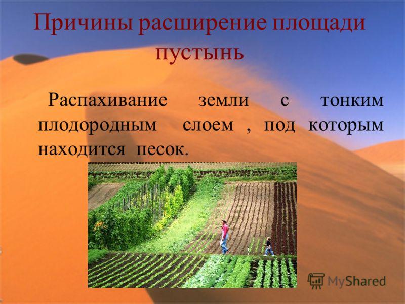 Причины расширение площади пустынь Распахивание земли с тонким плодородным слоем, под которым находится песок.