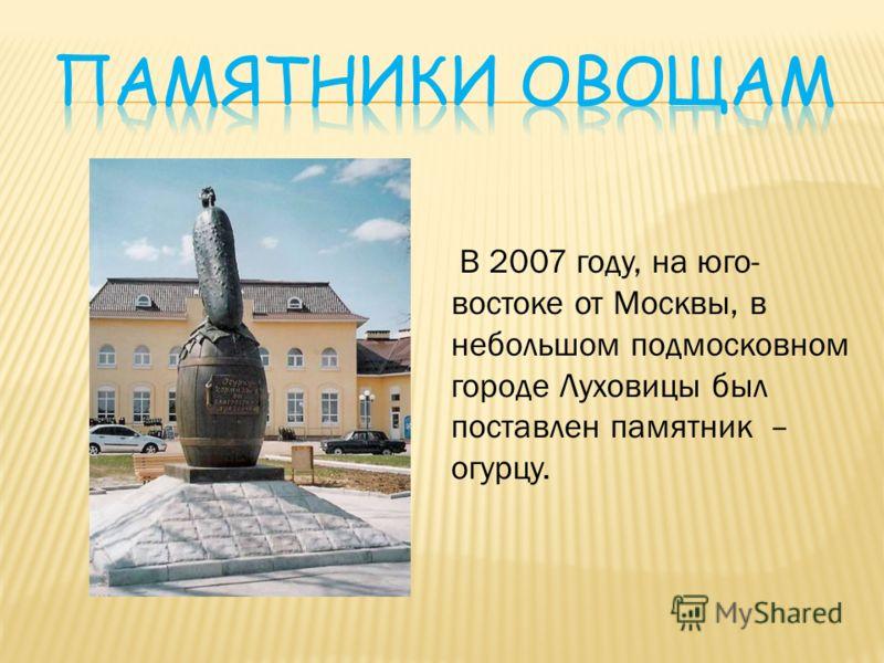 В 2007 году, на юго- востоке от Москвы, в небольшом подмосковном городе Луховицы был поставлен памятник – огурцу.