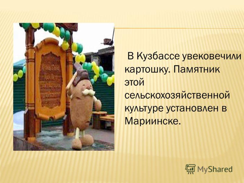 В Кузбассе увековечили картошку. Памятник этой сельскохозяйственной культуре установлен в Мариинске.