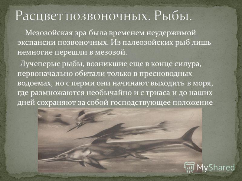 Мезозойская эра была временем неудержимой экспансии позвоночных. Из палеозойских рыб лишь немногие перешли в мезозой. Лучеперые рыбы, возникшие еще в конце силура, первоначально обитали только в пресноводных водоемах, но с перми они начинают выходить