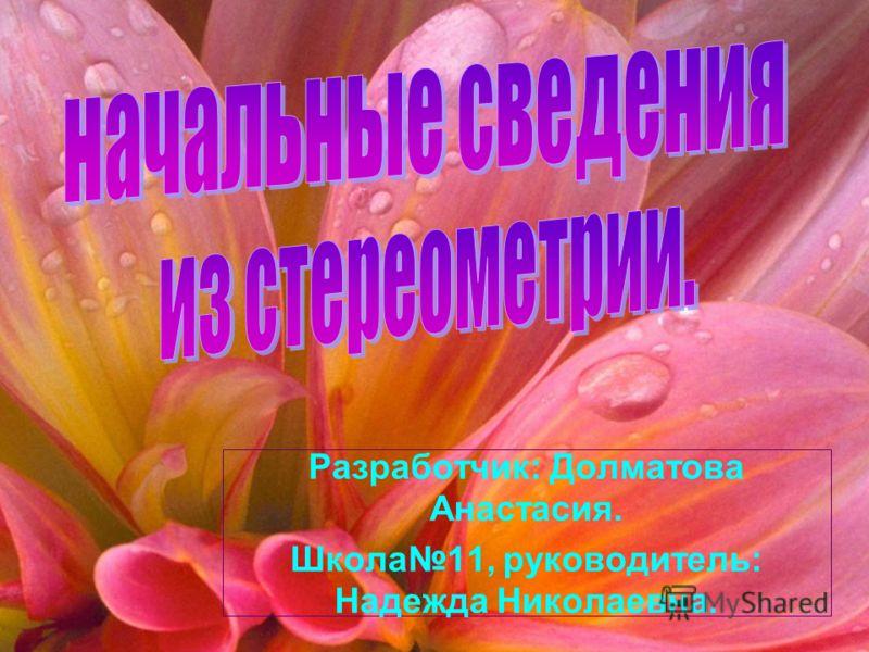 Разработчик: Долматова Анастасия. Школа11, руководитель: Надежда Николаевна.