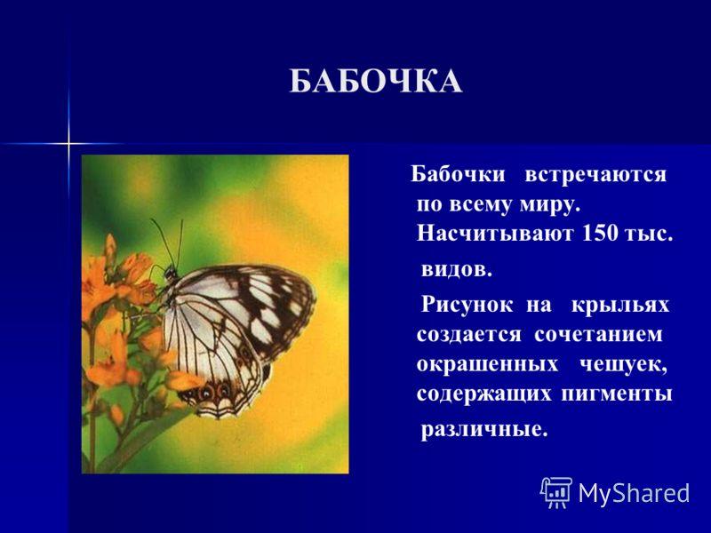 БАБОЧКА Бабочки встречаются по всему миру. Насчитывают 150 тыс. видов. Рисунок на крыльях создается сочетанием окрашенных чешуек, содержащих пигменты различные.