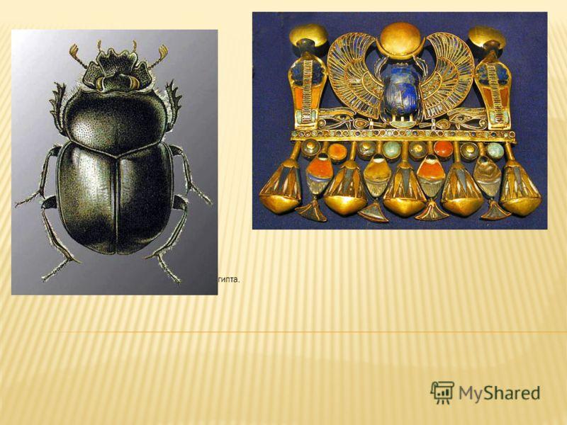 Один из самых знаменитых символов Древнего Египта.