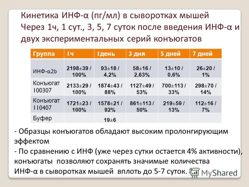 - Образцы конъюгатов обладают высоким пролонгирующим эффектом - По сравнению с ИНФ (уже через сутки остается 4% активности), конъюгаты позволяют сохранять значимые количества ИНФ-α в сыворотках мышей вплоть до 5-7 суток. Группа 1ч1ч 1 день 3 дня 5 дн
